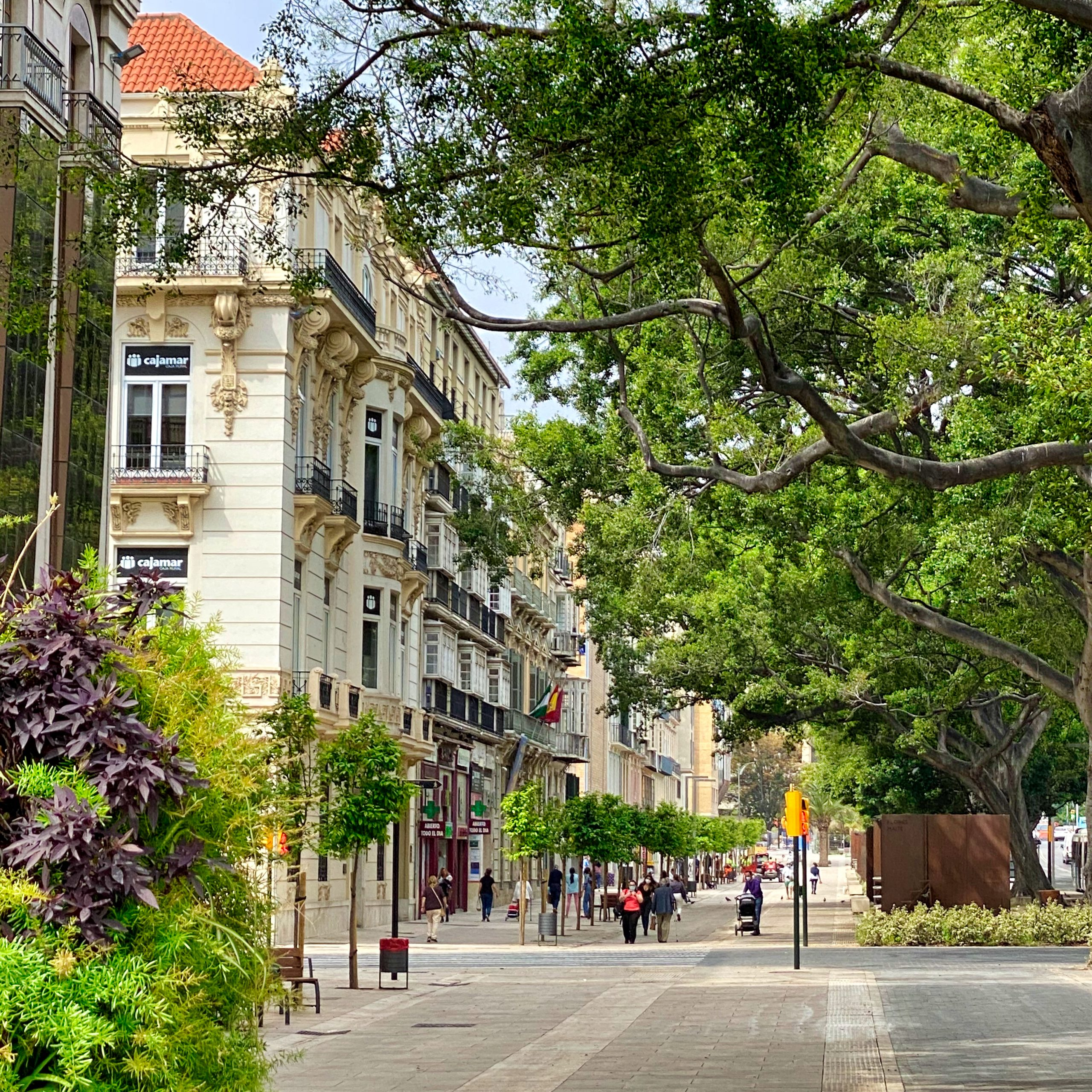 Alameda Principal main boulevard