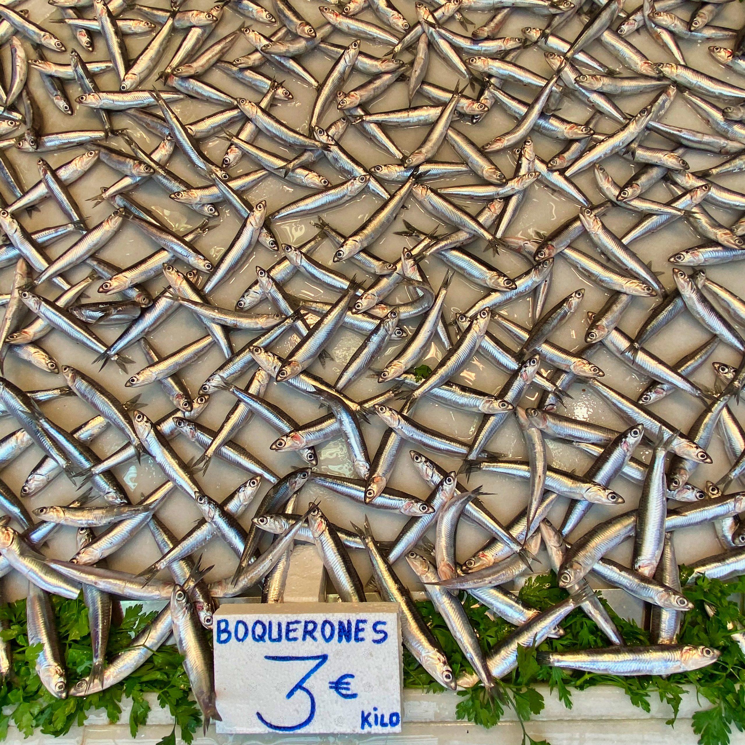 Boquerones im Fischbereich